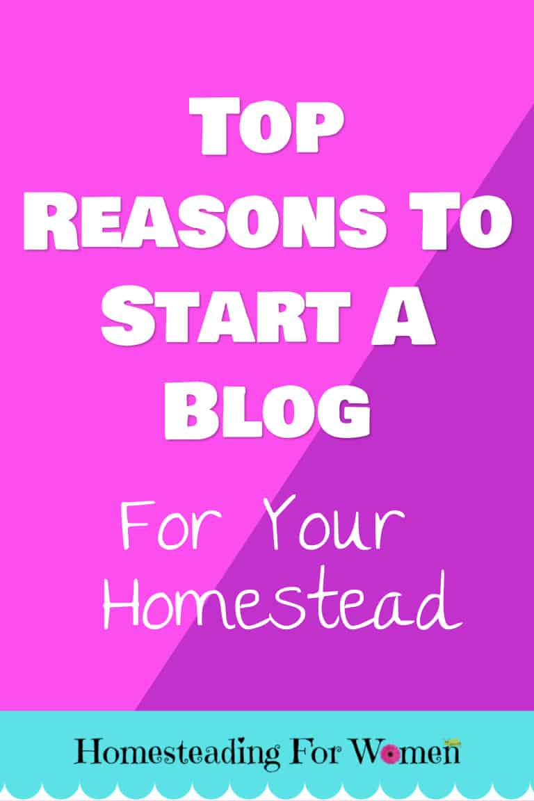 Top Reasons Why You Should Start A Blog For Your Homestead