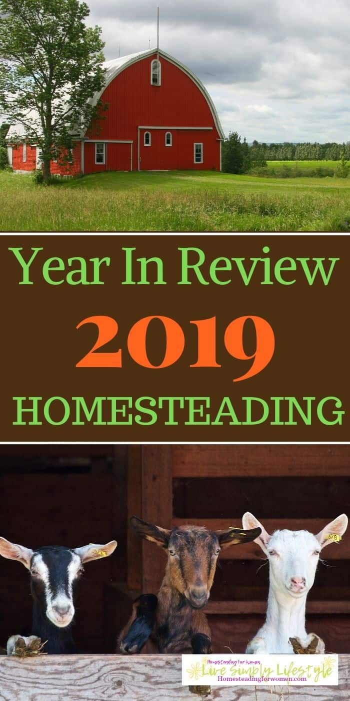 2019 Year In Review -What I Did On The Homestead