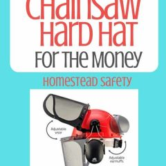 Best Chainsaw Hard Hat for the money