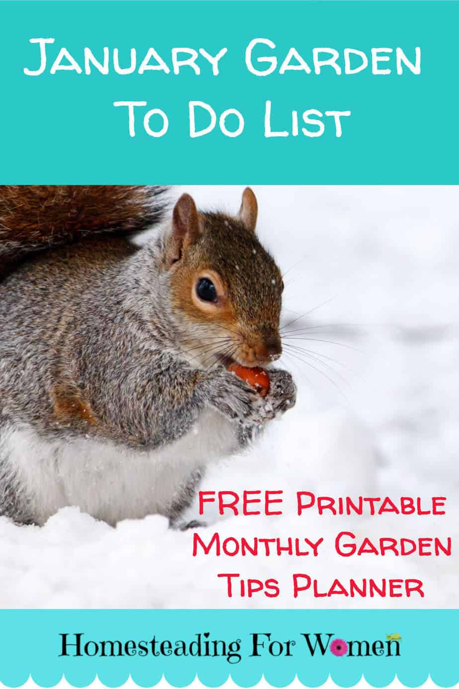 January Garden To Do List -Homestead Tasks