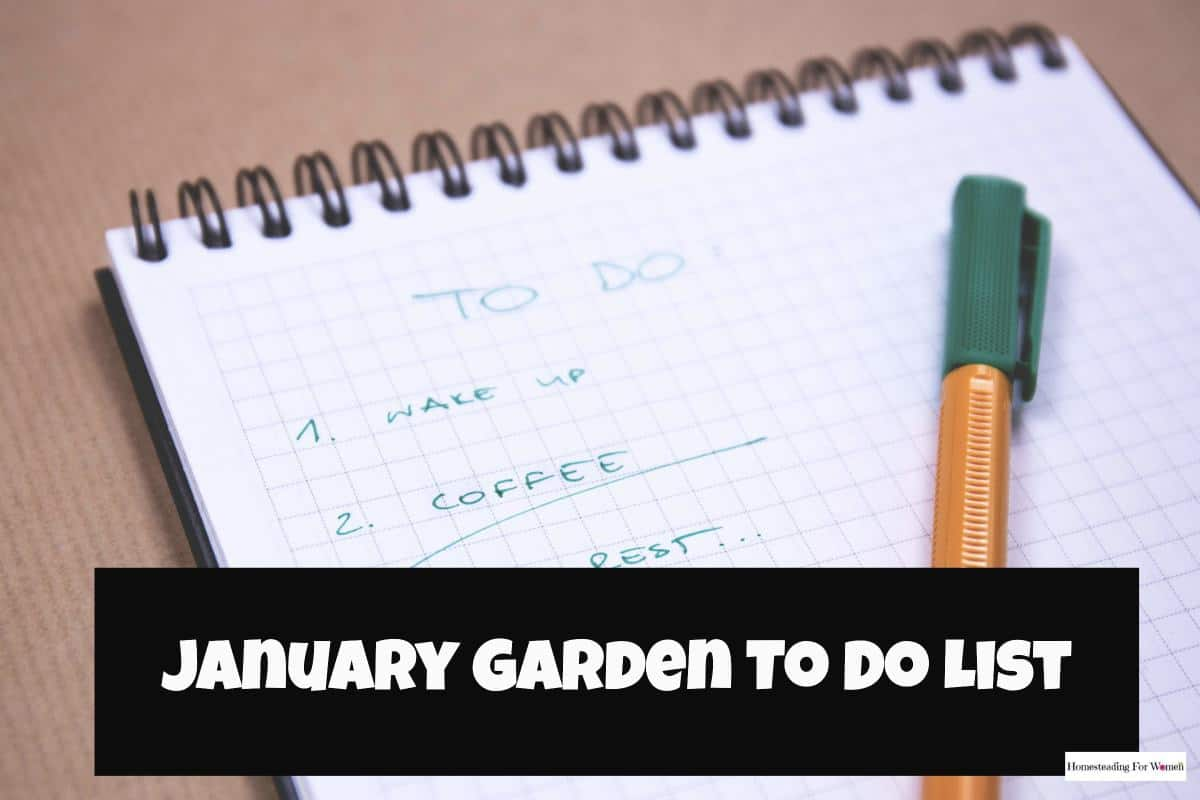 January Garden To Do List