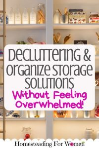 Decluttering and Organize Storage Solutions Without Feeling Overwhelmed 30 day challenge