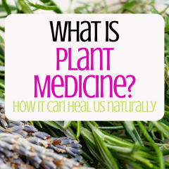 What Is Plant Mecicine