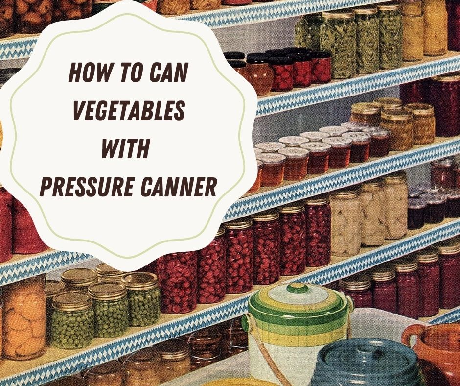 Food Preservation Canning Methods Pressure Cooker