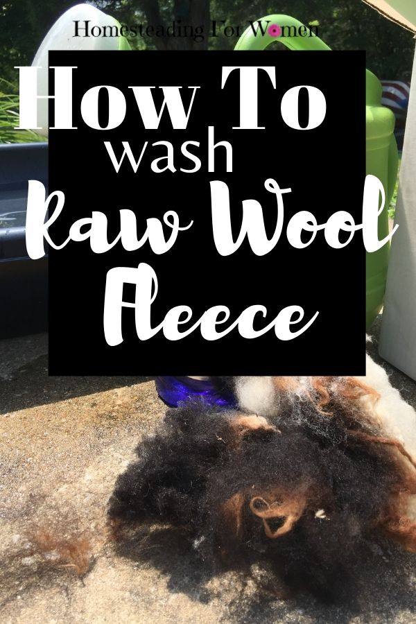 How To Wash Raw Wool Fleece And Not Felt It