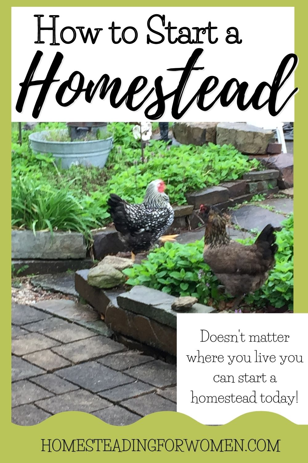How to Start a Homestead ~12 Profound Benefits of living on a Homestead